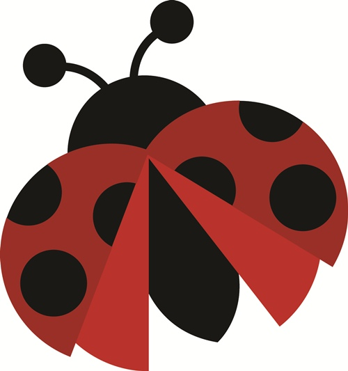 Lady Bug svg